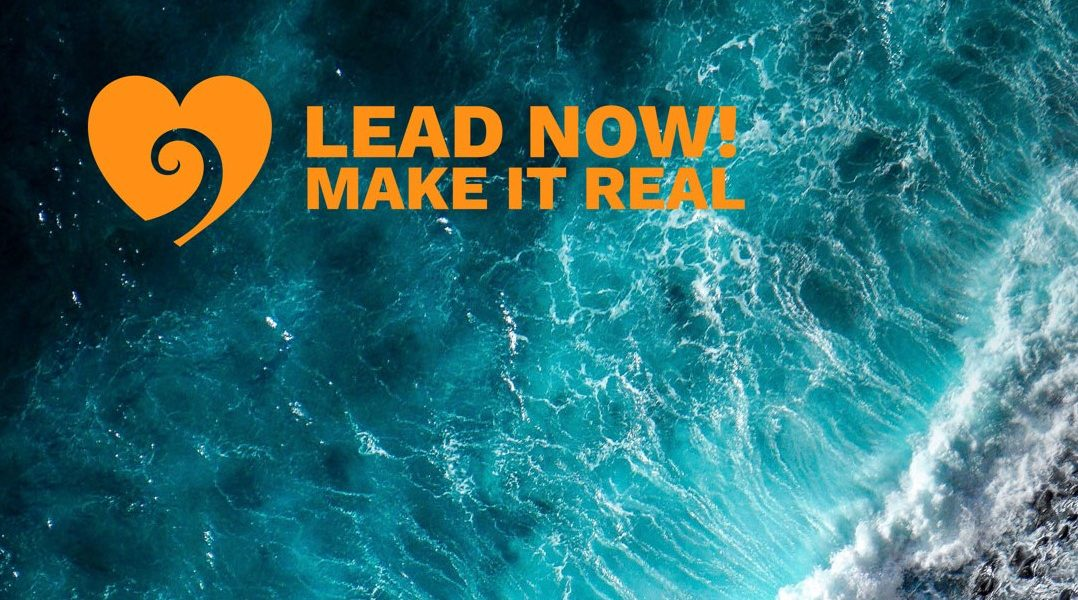 Lead-now -Make it real-The change-companeem landscape