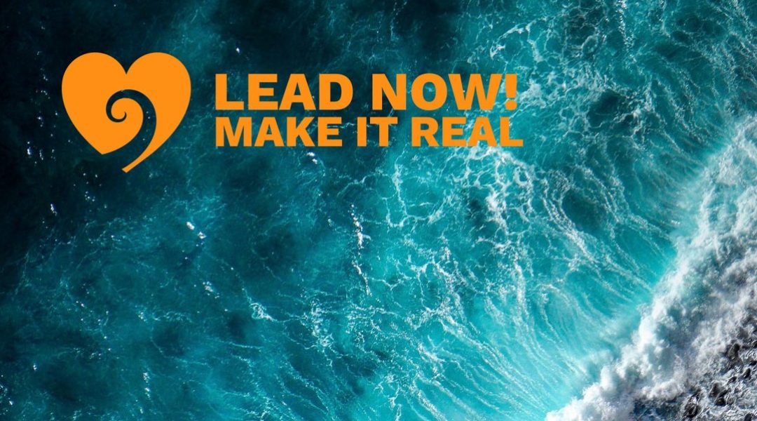 Lead-now -Make it real-The change-companeem landscape